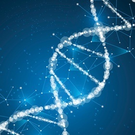 Genetic Testing For Adoptees